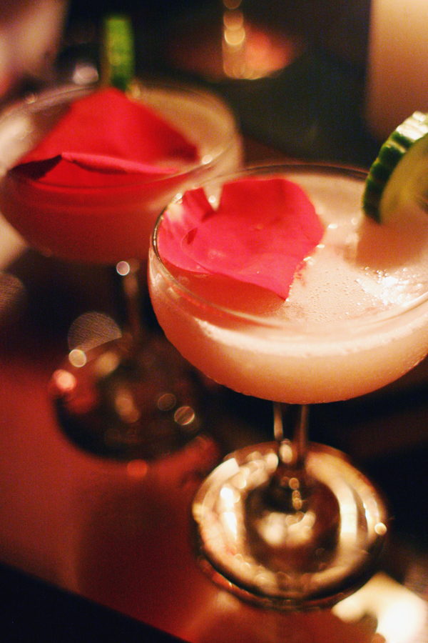 Hendricks-Gin-Cucumber-and-Rose-Society-Theatre-of-Curiosities-Party-Slide-Bar-Sydney-1