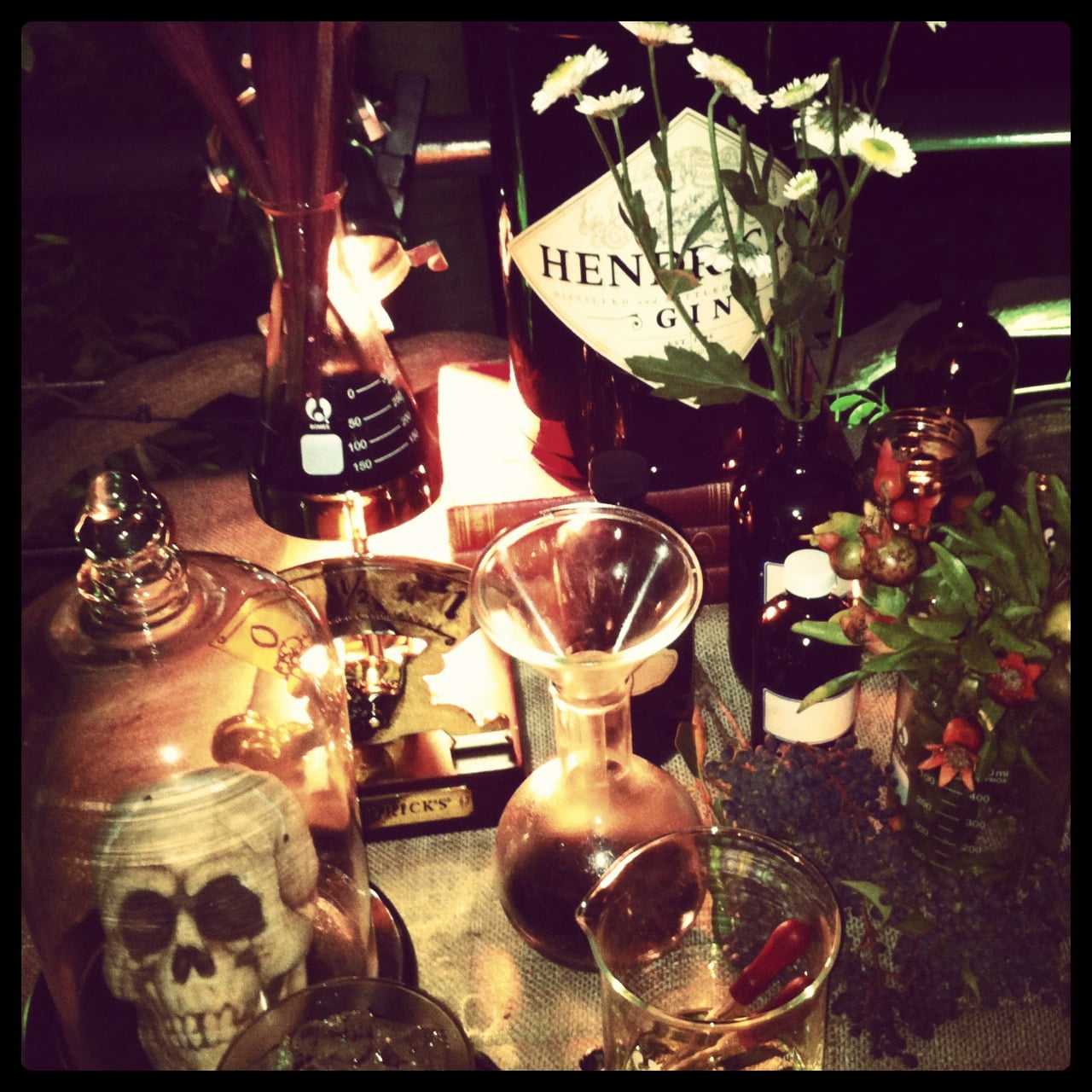 Hendrick's Night into the Botanical Unknown