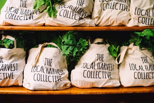 Destined for Darlo – The Local Harvest Collective Pop Up