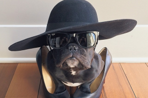 10 of the Best Instagram Accounts to Follow