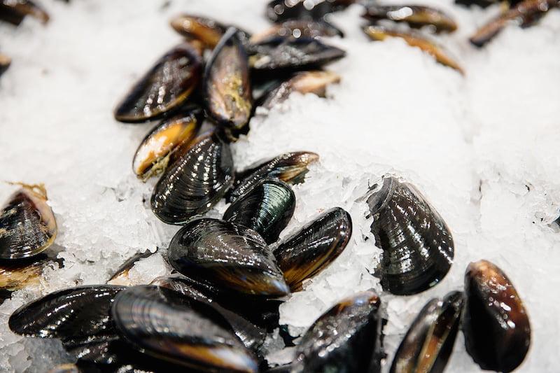 online fish market mussels
