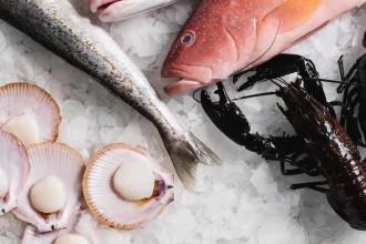 online fish market