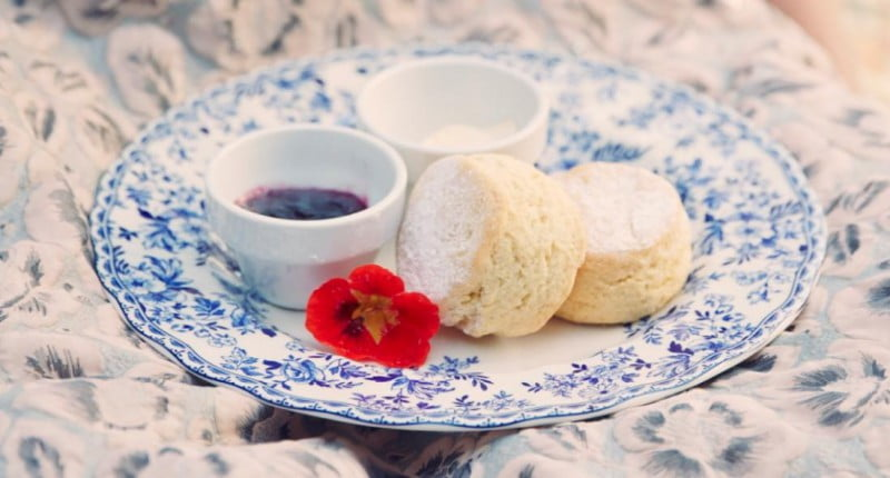 Spring Harvest Festival - Devonshire Tea