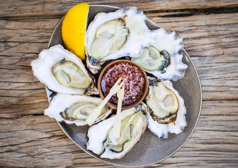 black-bottle-darlinghurst-oysters