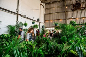 Sydney is Getting a Giant Indoor Plant Sale this Weekend