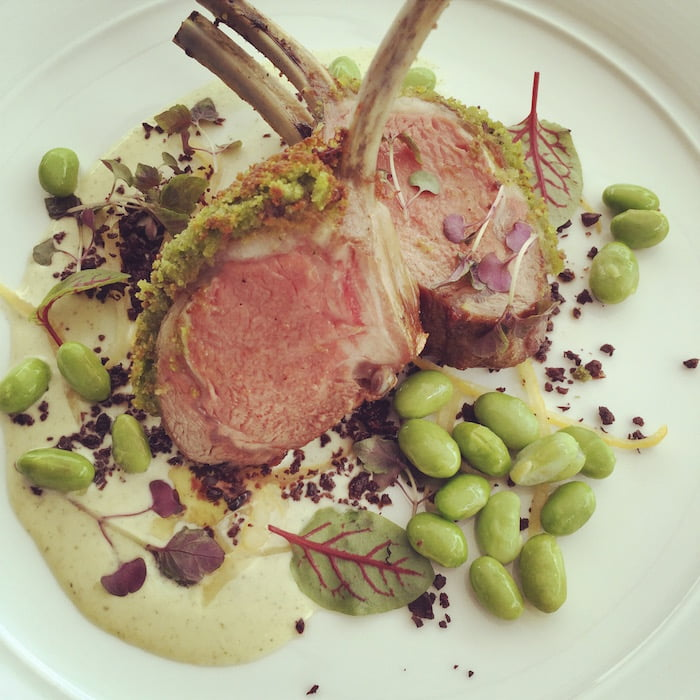 Catalina-Rose-Bay-Lamb-Chop