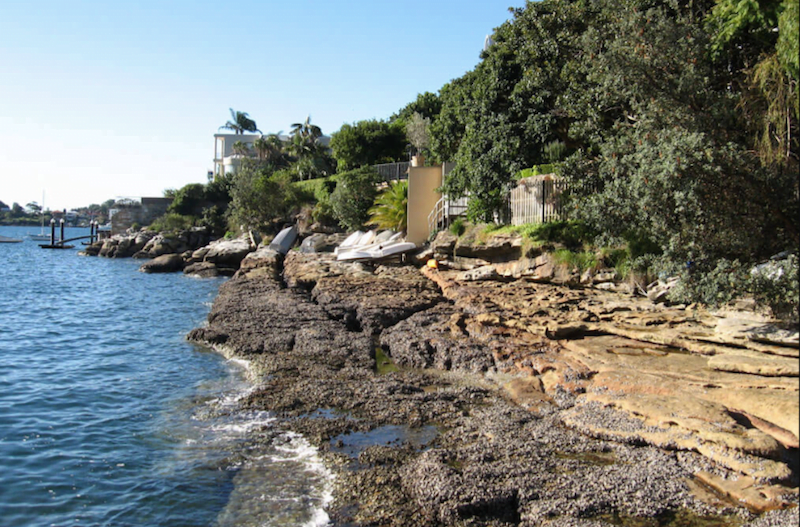 Parsley bay Swimming Sydney