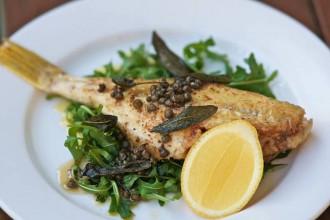 sydney-seafood-school-1