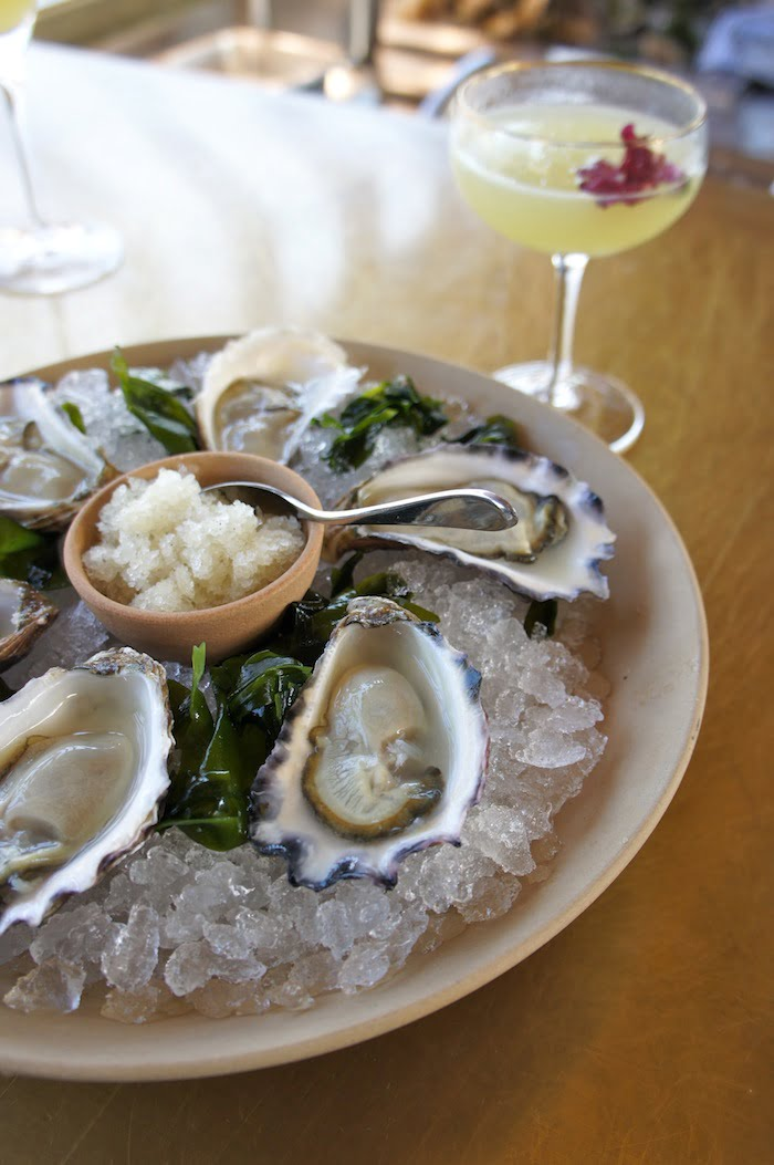 Oysters with granita