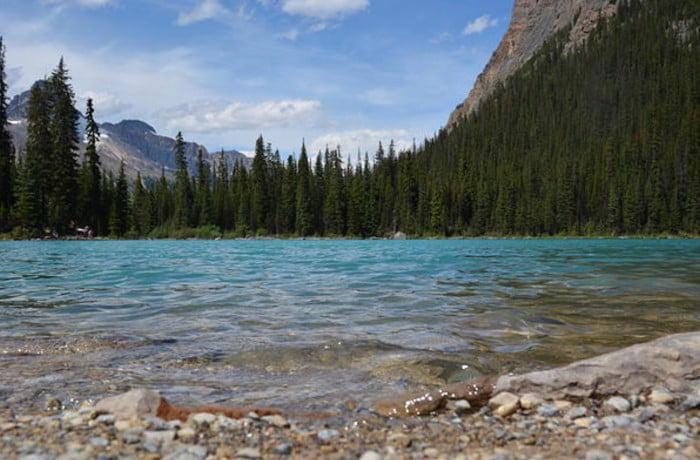 Canadian Rockies river