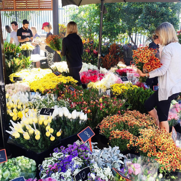 Bondi Farmers Markets Colourful Flowers