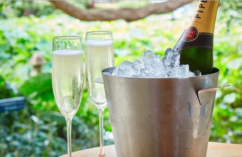 calyx-champagne