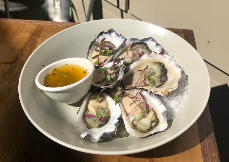 modus oysters