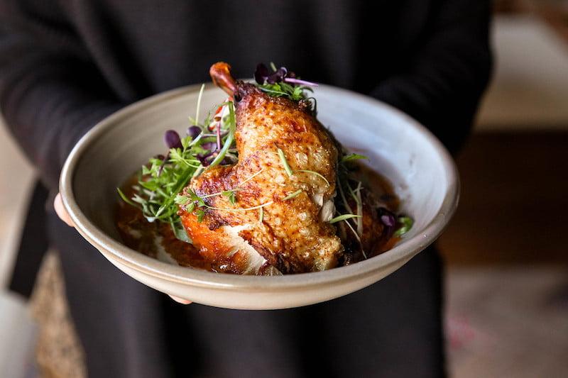 chubby-cheeks-paddington-chicken