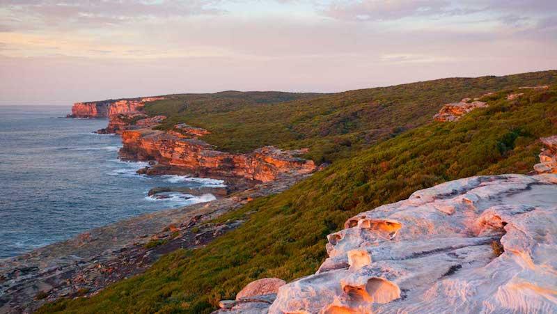 Best Coastal Walks Sydney Coastal Track